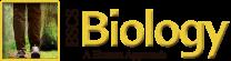 BSCS Biology: A Human Approach, high school science